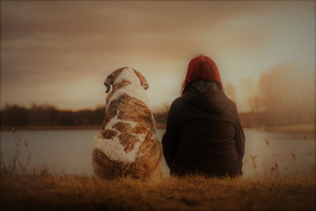 dream dog girl