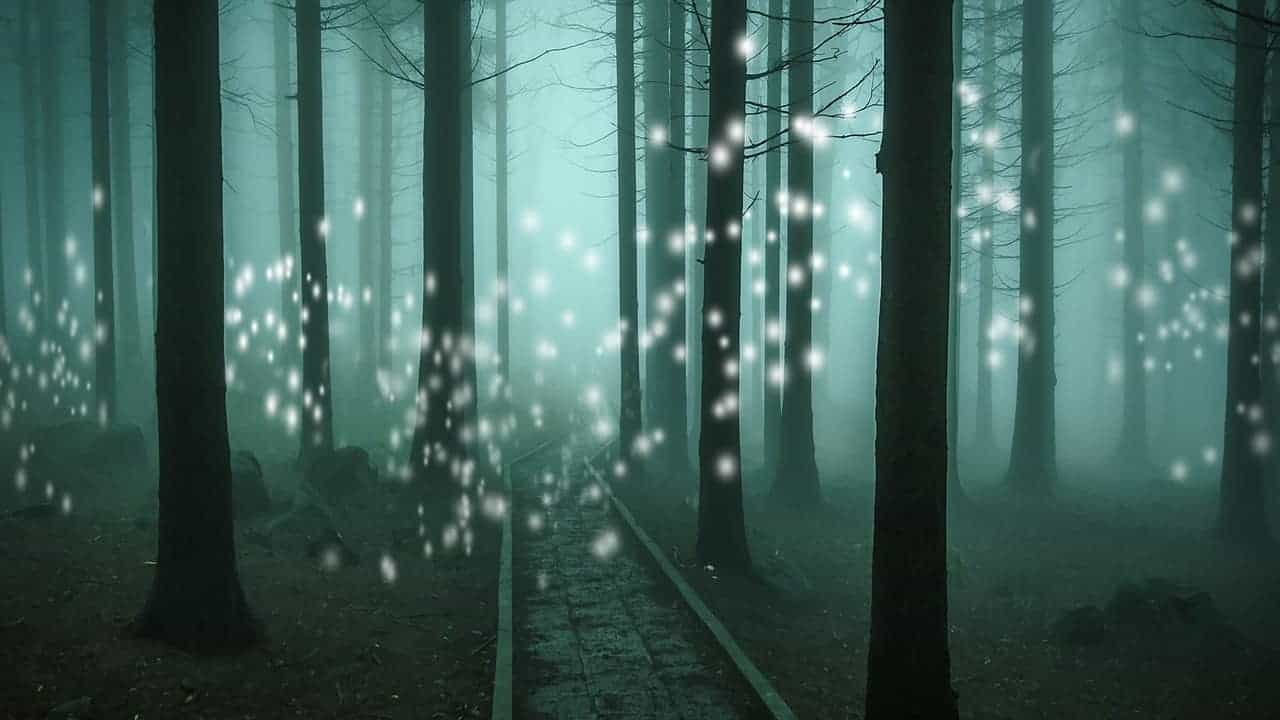 orbs of light