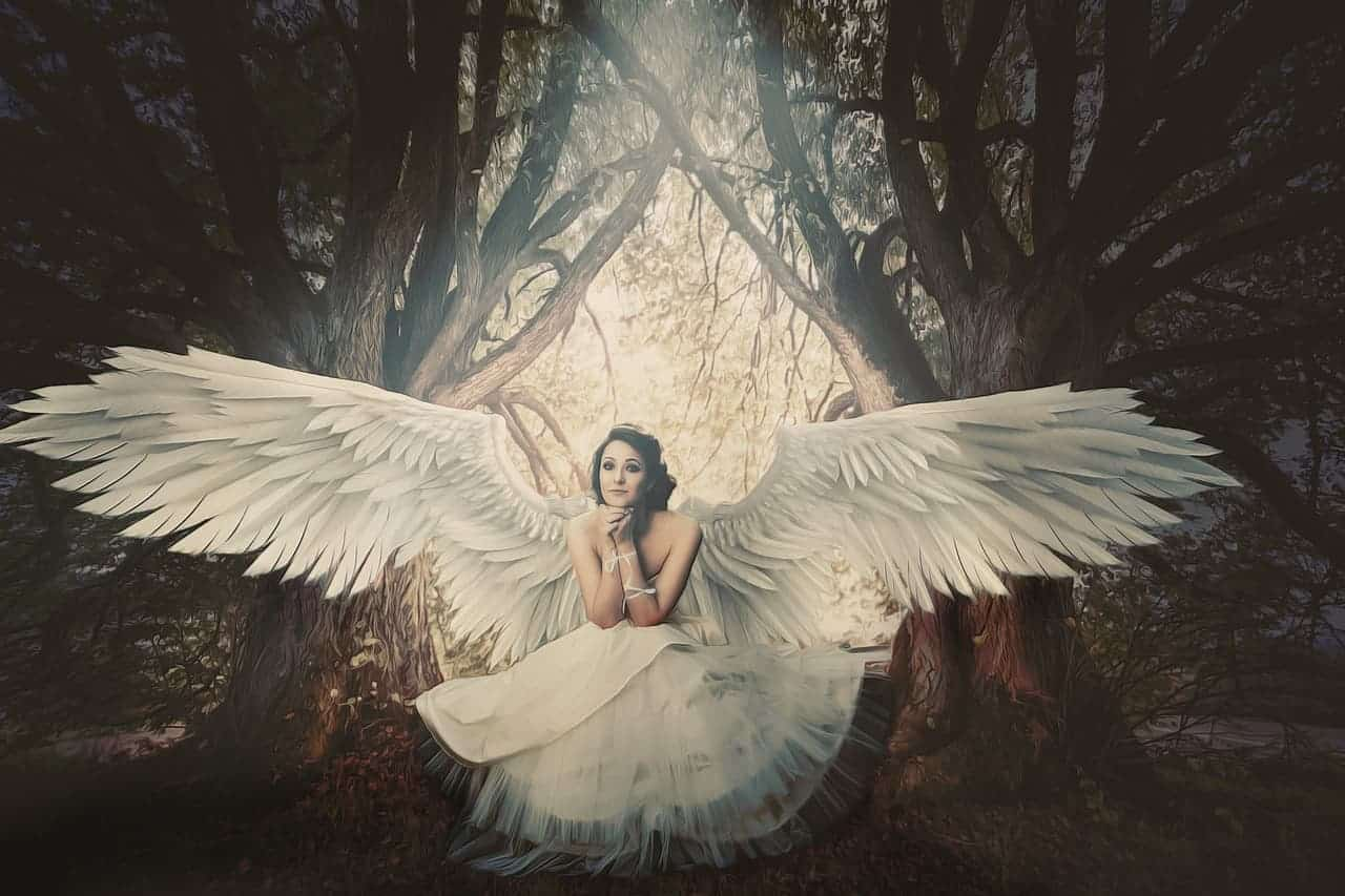 angel woman white wings
