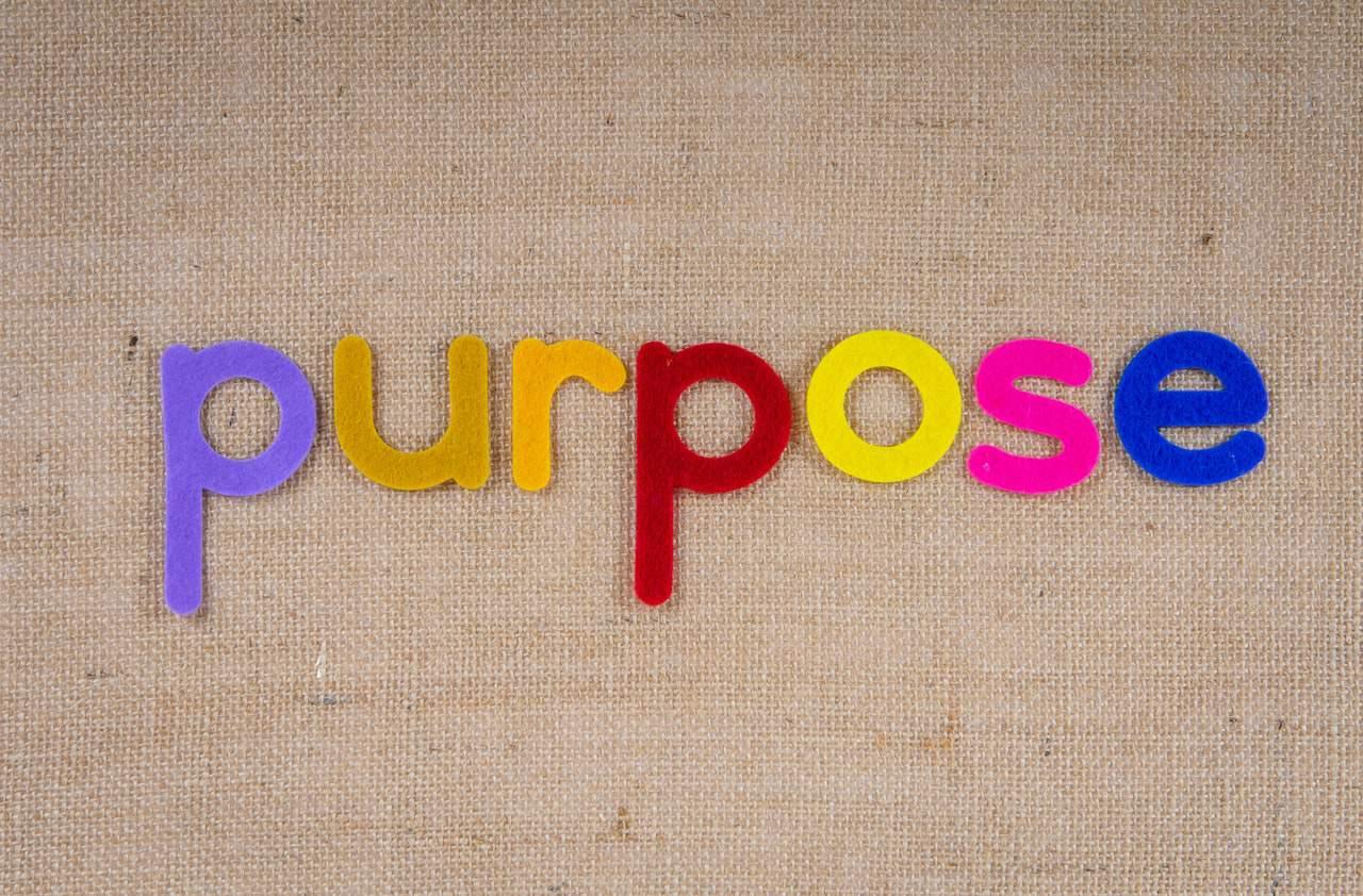purpose colors