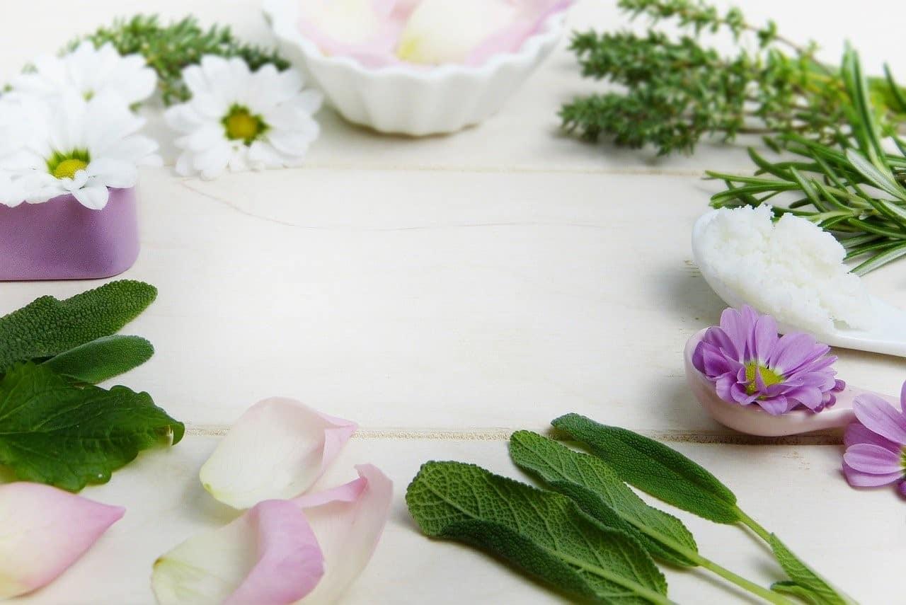 shamanic healing ingredients