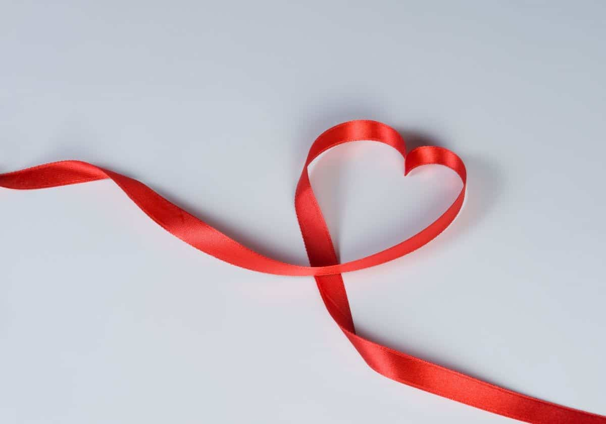 red velvet ribbon heart