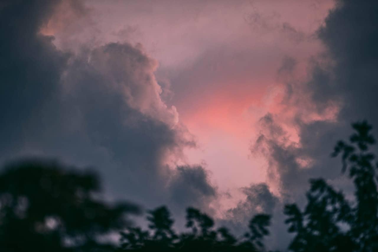 divine skies sign