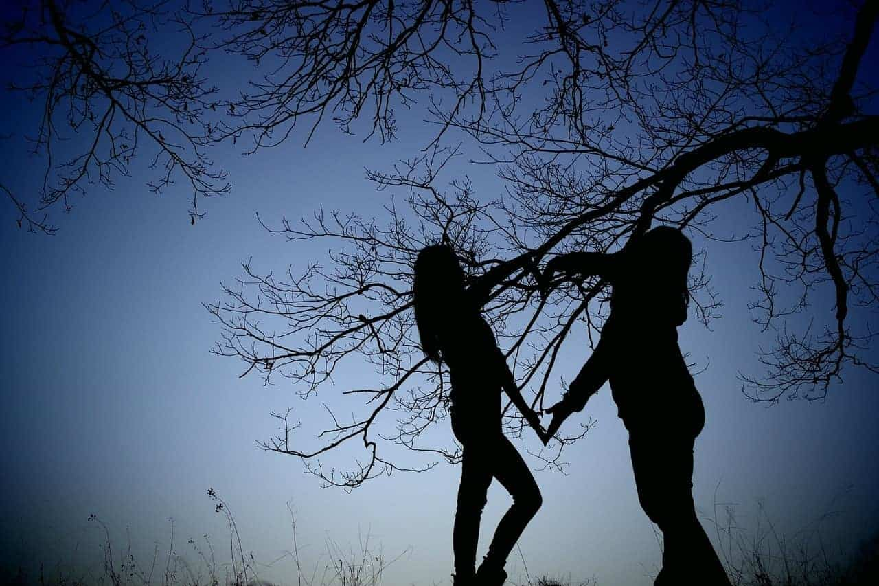 friends silhouette tree