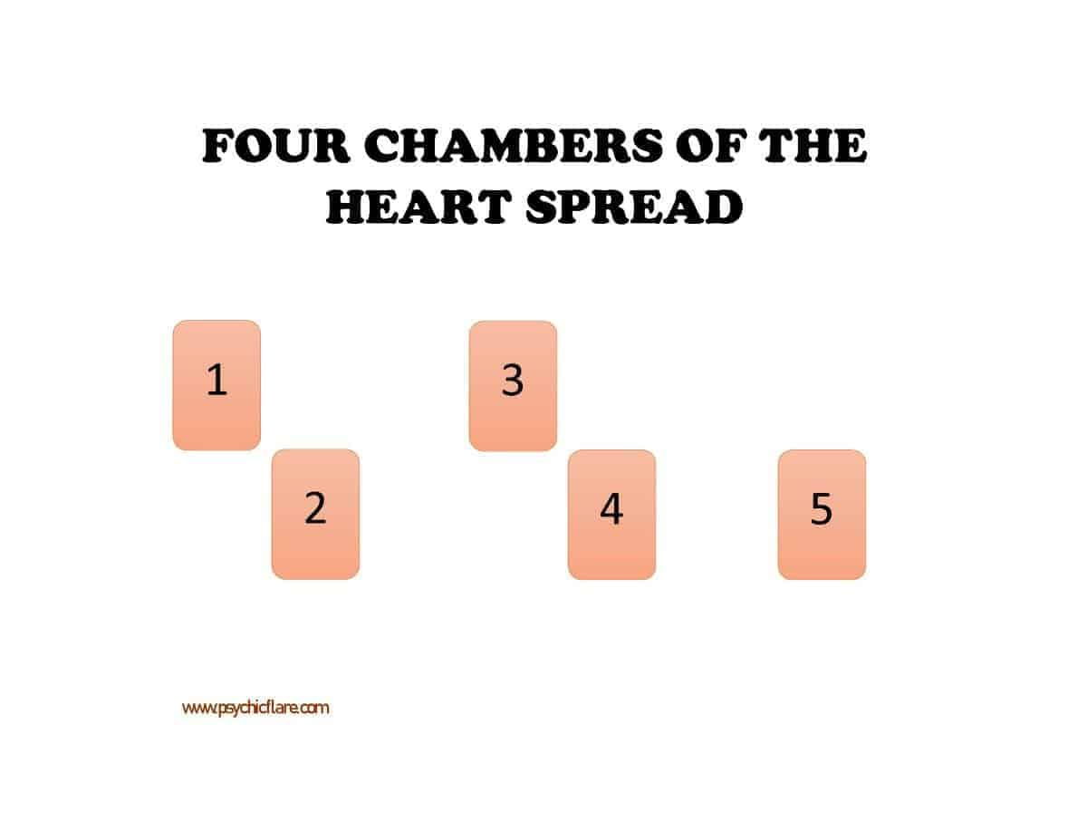 four chambers heart spread