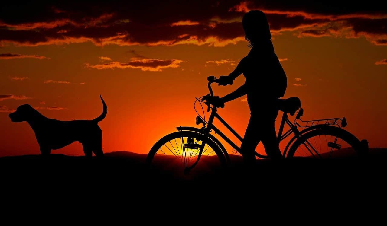 silhouette woman bike dog