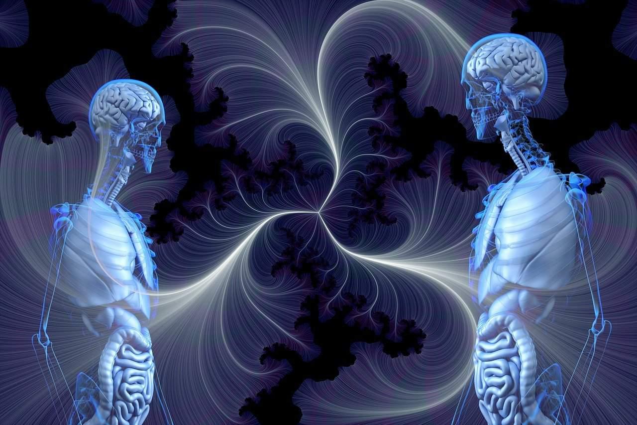 anatomy soul ties