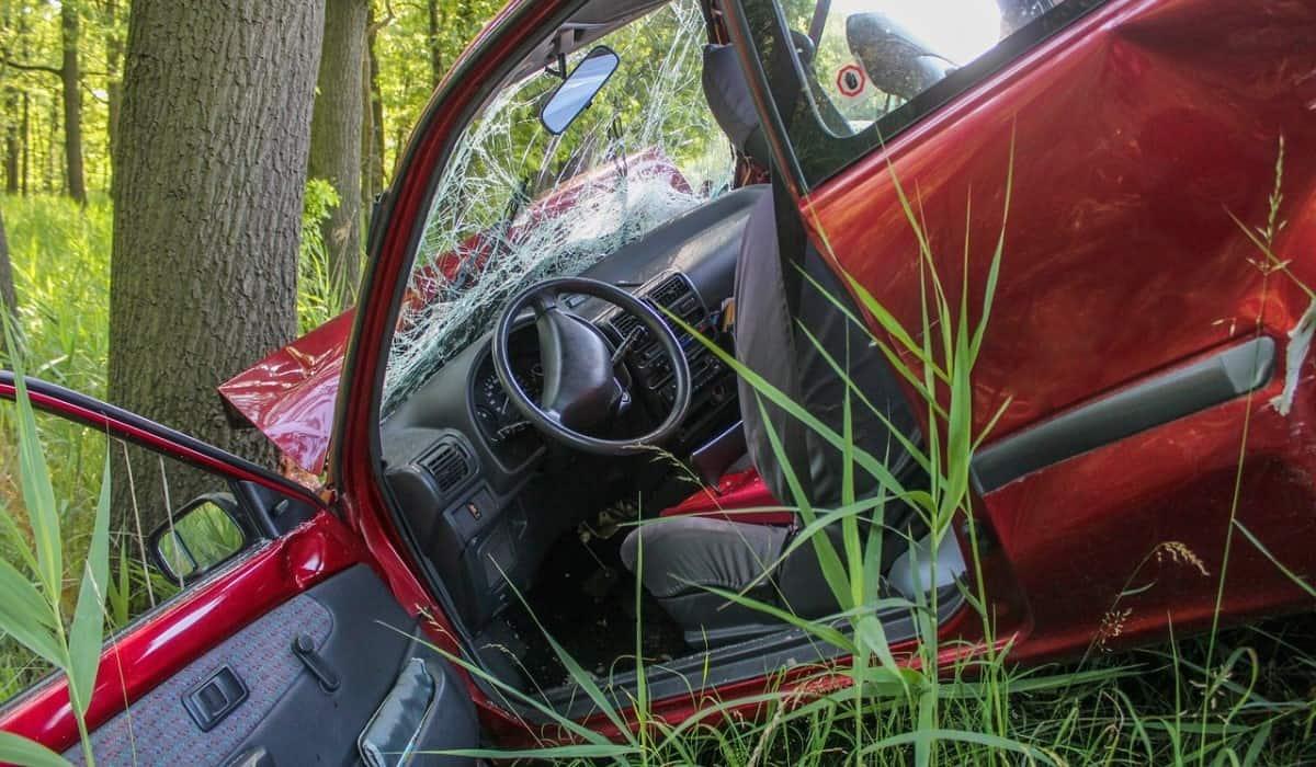 red car tree